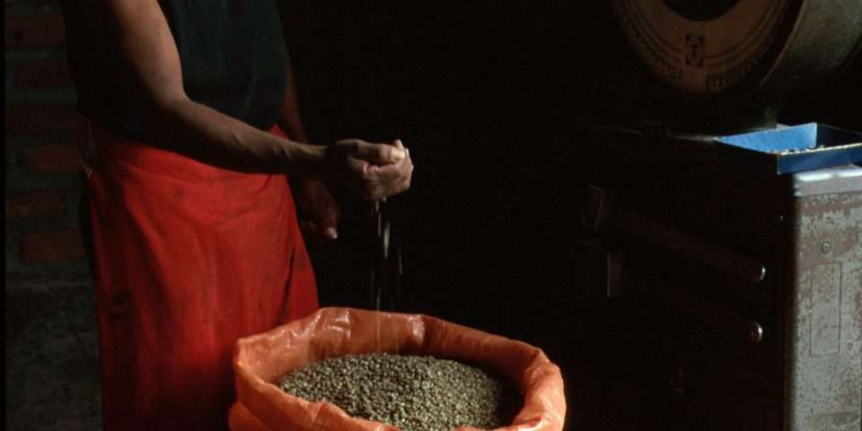 Selling green coffee