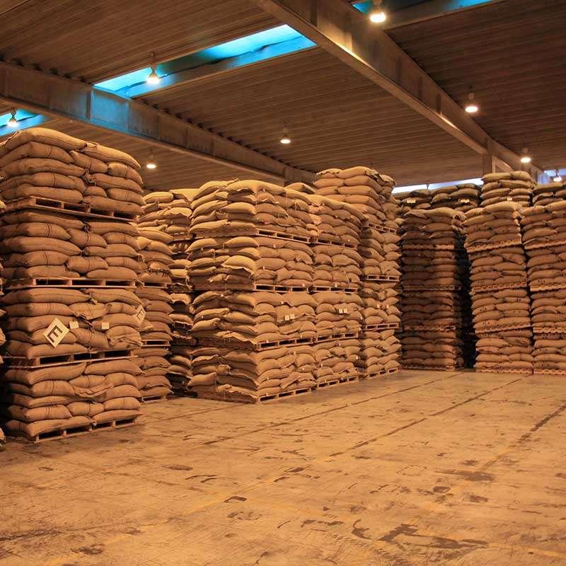 Storage green coffee