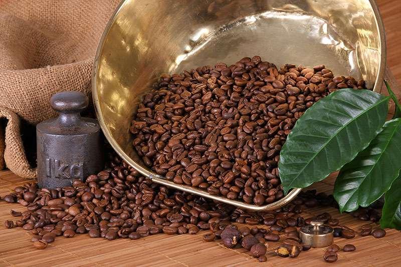 Green Coffee Price